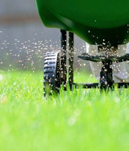 Lawn Aeration Cary NC